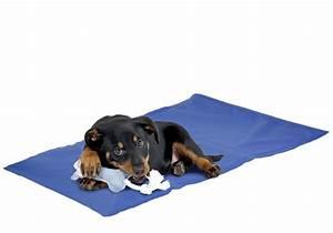 tapis rafraichissant pm pour chiens et chats coussins With tapis rafraîchissant chien