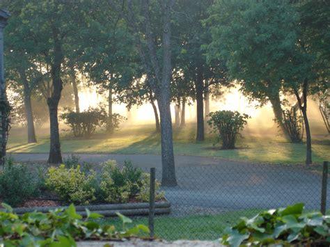 cour cuisine la brume du matin photo 2 24 photo au dessus de la