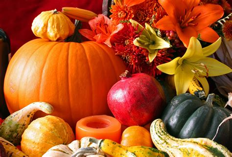 Desktop Fall Backgrounds Pumpkins by Fall Harvest Wallpaper Desktop Background Natures