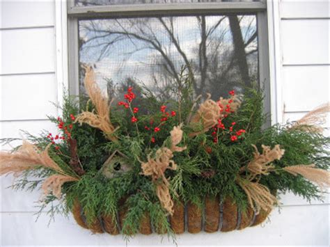 Greenbow Winter Window Boxes And Planters