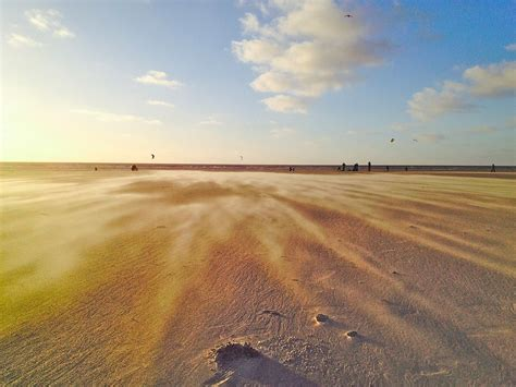 Free Photo Beach, Wind, Drift, Sand, Contrast Free