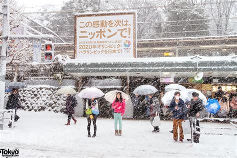 snow  harajuku shibuya  coming  age day