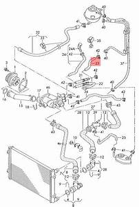 Coolant Hose With Quick Release Coupling Vw Beetle Golf