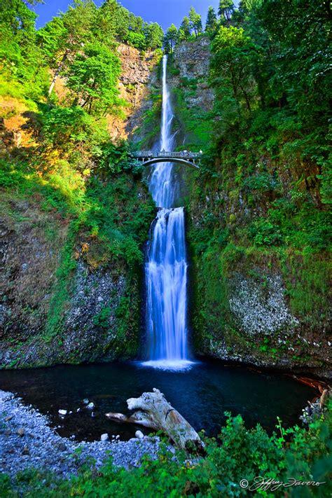 multnomah falls  columbia river gorge jeffrey