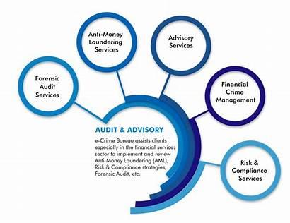 Financial Crimes Aml Crime Bureau Management Services