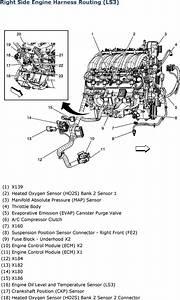 Ls3 Wiring Harnes Schematic