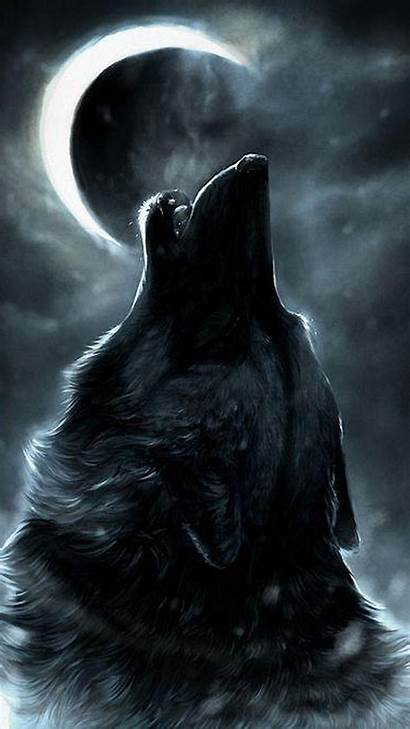 Wolf Cool Iphone Wallpapers Phone Tablet Mobile