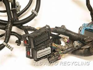 2011 Cadillac Escalade Engine Wire Harness