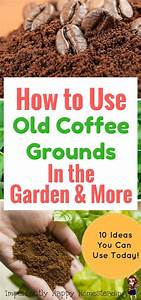 how to use coffee grounds in the garden more great