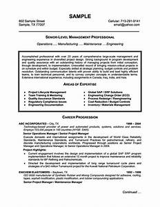 Senior Level Management Professional Resume Example