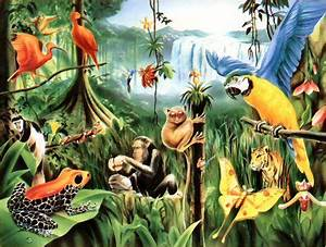 Waterfall clipart rainforest habitat - Pencil and in color ...