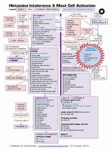 Advil vs ibuprofen - Materials