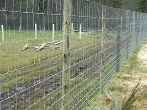 Deer Netting for Fence Posts