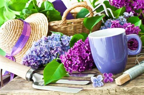 Unique Garden Gifts - 10 unique gardening gifts for the gardening gal gardenbunch