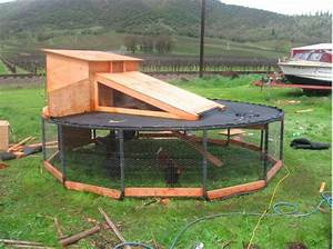 Re-purpose A Trampoline Into A Chicken Coop - Homestead