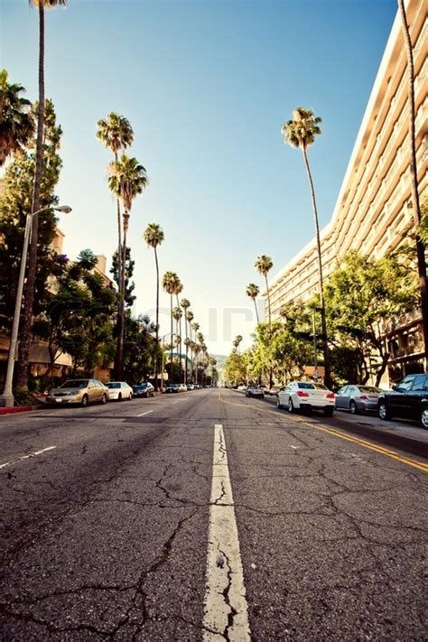 palm streets  beverly hills stock photo colourbox