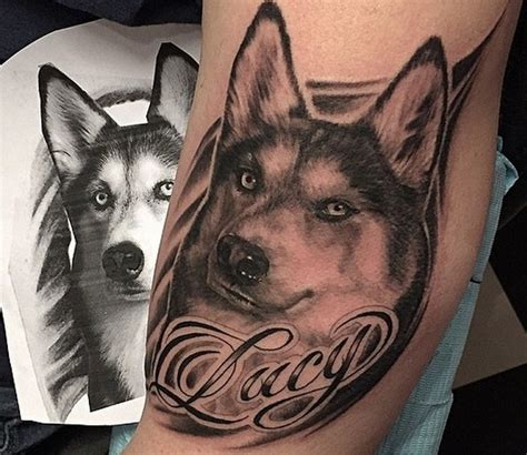 coolest husky tattoo designs   world