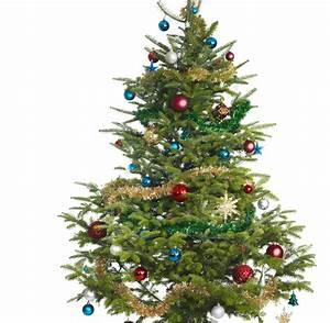 Wann Stellt Man Weihnachtsbaum Auf : seit wann stellt man weihnachtsbaume auf frohe weihnachten in europa ~ Buech-reservation.com Haus und Dekorationen