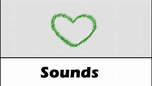 Echo Sound Effects All Sounds - YouTube