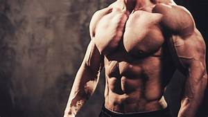 The Best Muscle Building Exercises For Each Bodypart  U2014 Tiger Fitness