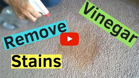 How To Get Stains Out Of Carpets Using Only Vinegar Red Carpet Gala 2018 How Do You Clean A Vomit Homemade Shampoo With Vinegar Furniture Marks On Car Grease Stains Out Of To Remove That Keep Coming Back Call Locations Vic Country Music Awards