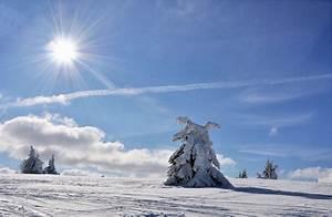 Sonne Im Winter : winter sonne foto bild deutschland europe die rh n ~ Lizthompson.info Haus und Dekorationen