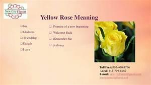 June – National Rose Month