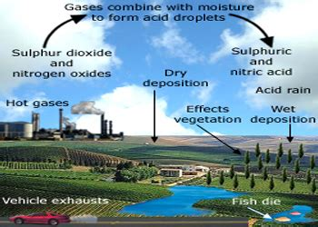 how to form acid rain acid deposition how we see the environment