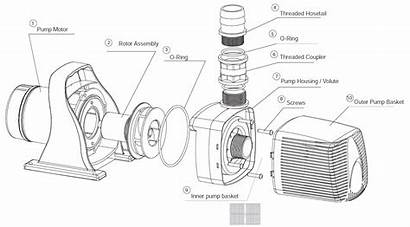 Waterfall Pump Parts Sp Diagram Replacement Pumps