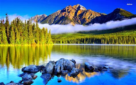 Nature Wallpaper Most Beautiful Cool Photos by Hd Nature Wallpapers Most Beautiful Nature Hd Images
