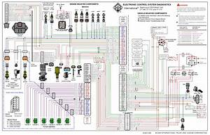 I Am Looking For A Wiring Diagram For An 05 Dt466e