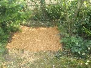 Anlegen Eines Gartens : anlegen eines pilzbeetes ~ Michelbontemps.com Haus und Dekorationen