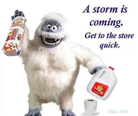 Bumble Snow Storm Quotes Funny