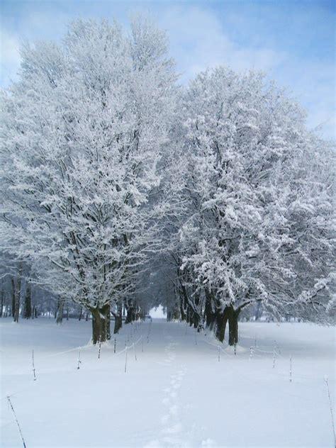 foto de paysages sous la neige Page 41