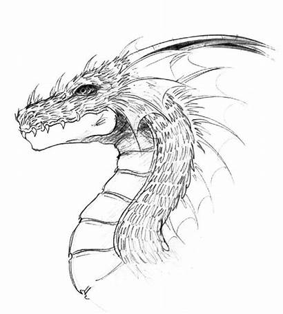 Dragon Drawings Easy Drawing Simple Pencil Head
