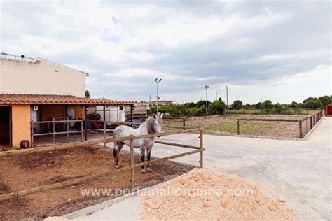 finca de obra nueva  cuadras  pistas de caballos