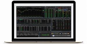 Forex Dominion System