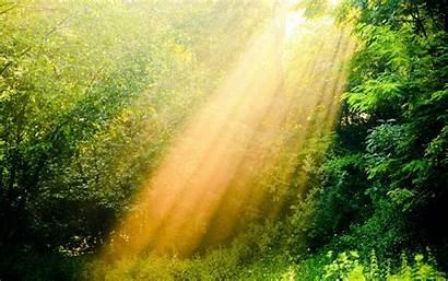 Environment Clean Health Issues Environmental Natural Sunshine