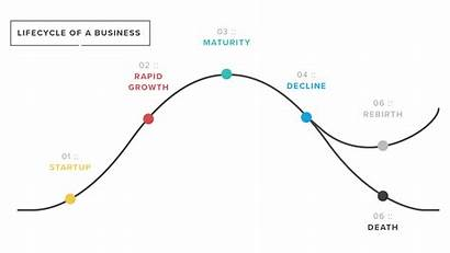 Business Lifecycle Chart Company Brew Customers