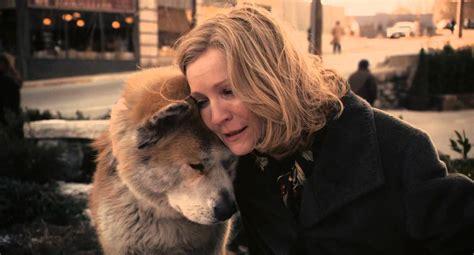 emotional scene  hachiko  dogs story youtube