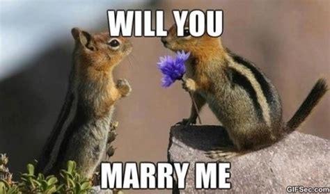 Marry Me Meme - marry me meme collection