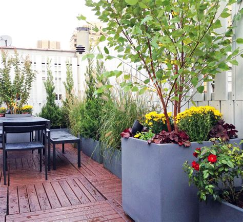 roof garden plants upper west side nyc roof garden terrace deck fence container plants outdoor contemporary