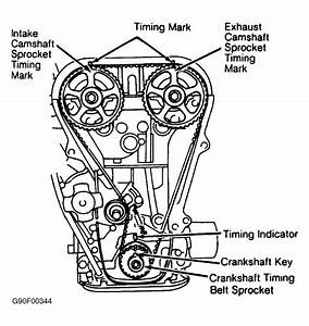 1989 Suzuki Swift Serpentine Belt Routing And Timing Belt Diagrams