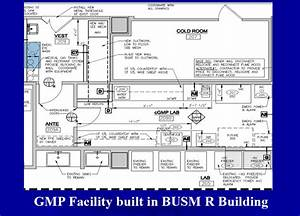 Good Manufacturing Practice Facility  Gmp
