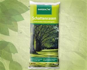 Gazon Pour L Ombre : semences de gazon d 39 ombre gardenline r aldi suisse ~ Premium-room.com Idées de Décoration