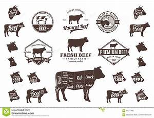 Vector Beef Logo  Icons  Charts And Design Elements Stock