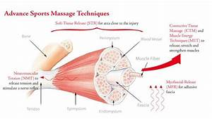 33 Best Images About Orthopedic And Sports Massage On
