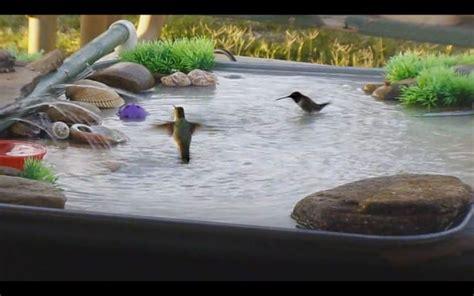 diy bird bath bird bath fountain hummingbird bird bath