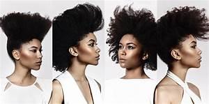 Tete A Coiffer Afro : afro style 4 id es coiffure updo le blog ~ Melissatoandfro.com Idées de Décoration