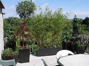 decoration balcon terrasses fleurs plantes vegetaux With amenagement terrasse exterieure appartement 5 bambou en pot brise vue naturel et deco sur la terrasse